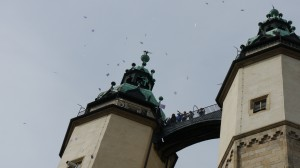 Churchbells for Peace in Halle / Friedensglocken in Halle